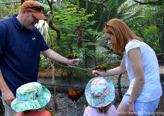 Tampa's Lowry Park Zoo : Feeding the birds