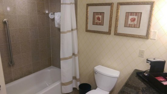 Delta Hotels by Marriott Chesapeake: Bathroom