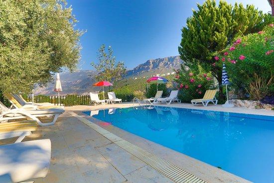Villa Dundar Kas Apartments: Swimming pool