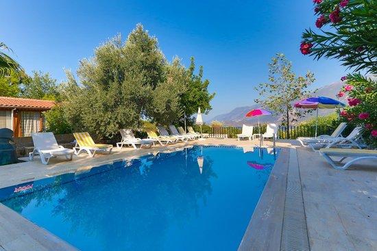 Swimming pool of Villa Dundar Kas apartments