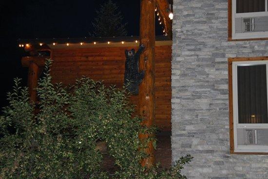 The Lodge at Jackson Hole: The Bears