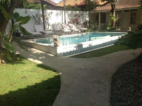 Gardenia Guesthouse: Spotless Sparkeling Pool