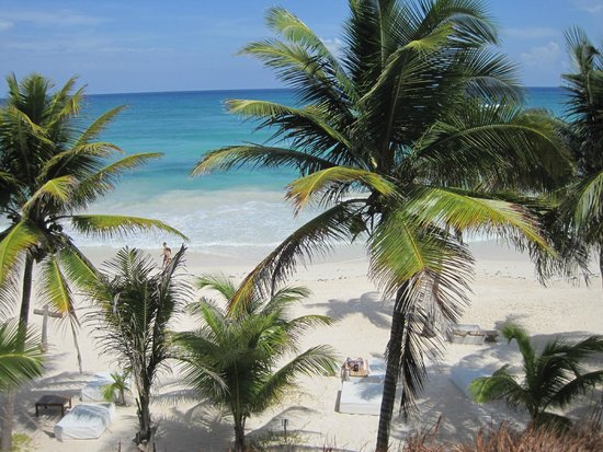 "The Beach Tulum : View from our the roof deck of our room (""third"" floor)."