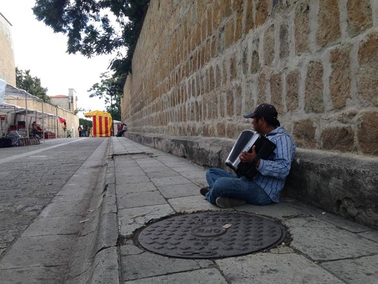 Casa Angel Youth Hostel: street musician