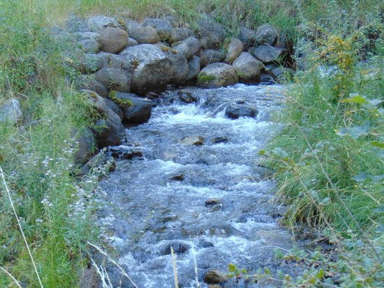 Wallowa Lake Resort: Stream