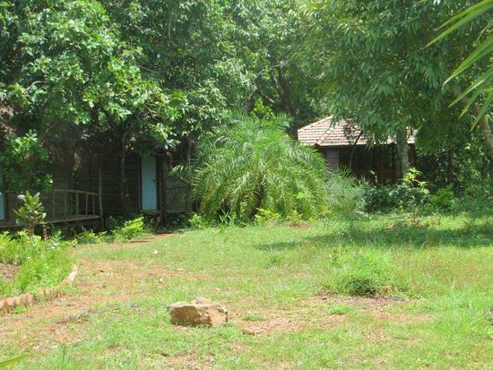 Paradise Holiday Cottages: Hotel area