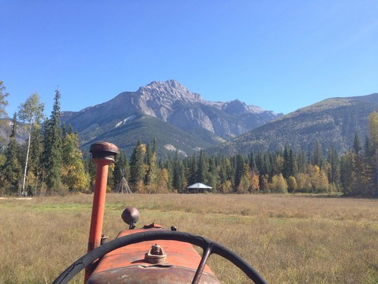 Rocky Mountain Buffalo Ranch & Guest Cottage Buffalo Tours: What a view