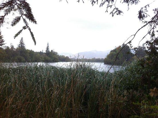 Spring Lake Park: SLP