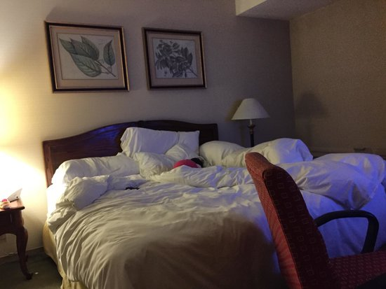 Four Points by Sheraton San Jose Airport: king size bed