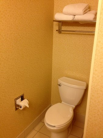 Fairfield Inn & Suites Chattanooga South/East Ridge : Bathroom was very clean