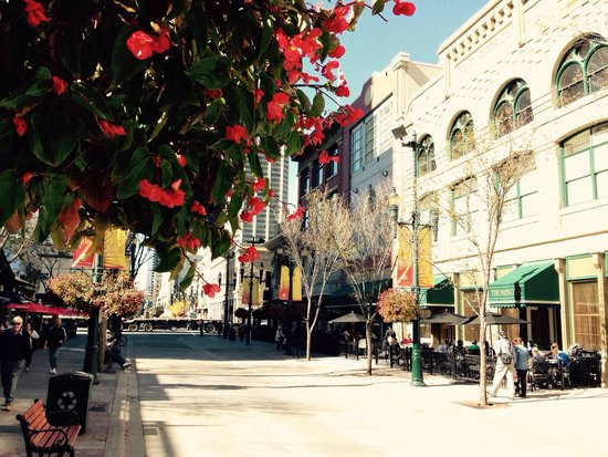 Stephen Avenue Walk : Flowers and nice shops!