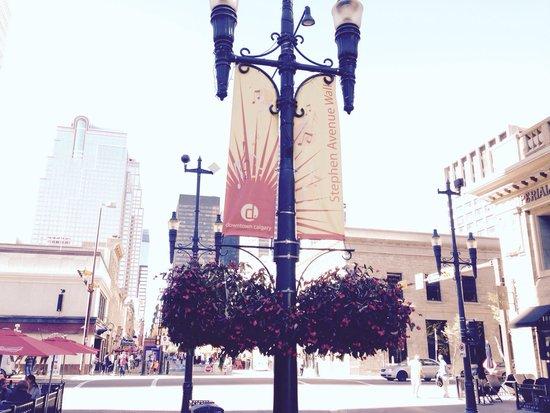 Stephen Avenue Walk : Calgary at its best!