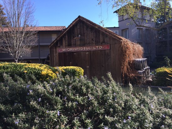 Embassy Suites by Hilton Napa Valley: Courtyard