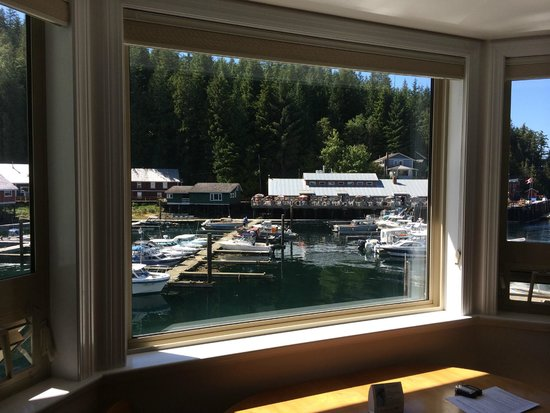 Telegraph Cove Marina & RV Park: Vista dalla camera