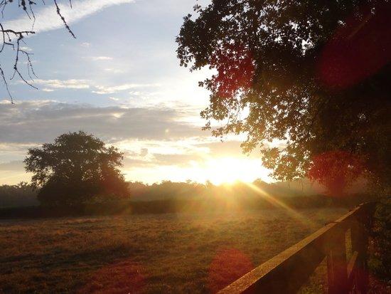 Natura Cabana : lever du soleil en terasse