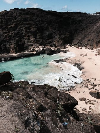 Hawaiian Style Rentals & Sales : One of our stops along 72