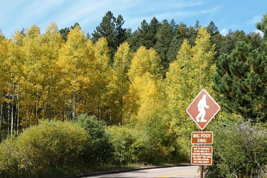 Pikes Peak - America's Mountain: Bigfoot warning and leaving changing past mile 3