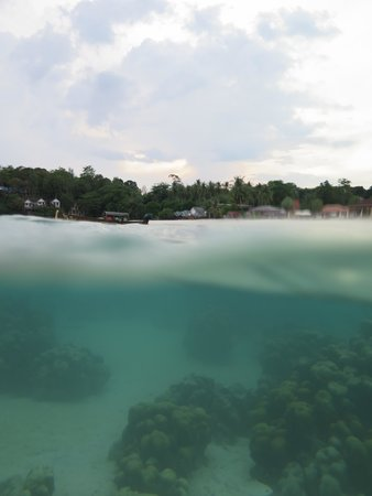 Mali Resort Pattaya Beach Koh Lipe : Snorkeling - Right At Your Door Step