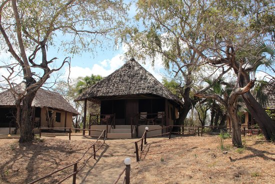 Selous Mbuyu Safari Camp: Unser Zelt