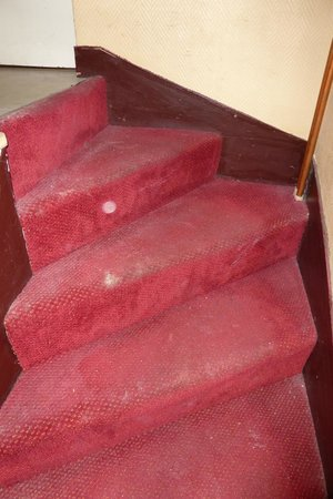 Hotel Saint-Michel: the stair carpet  - and its mould