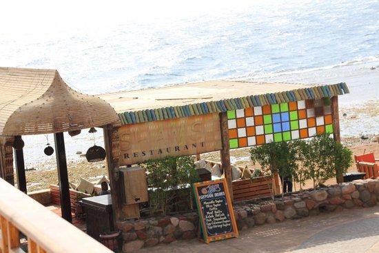 Shams Hotel: shams cafe & restaurant