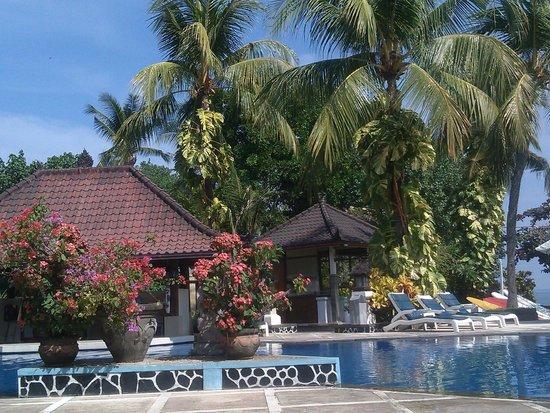 Aneka Lovina Beach Hotel: beautiful environment