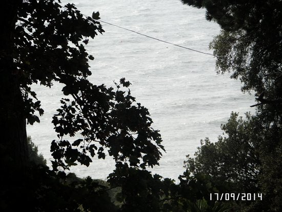 Cornerways Ventnor: sea view