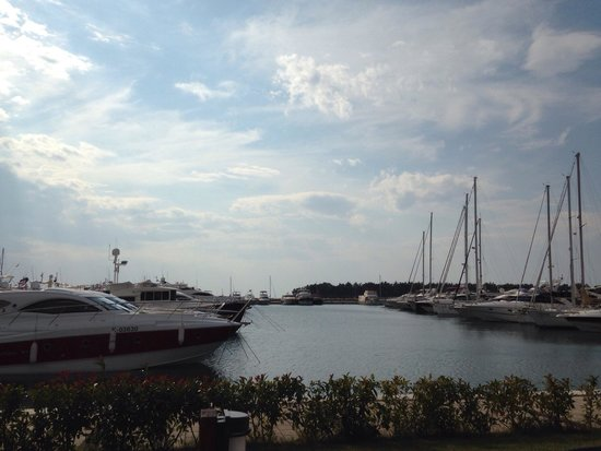 Hotel Nautica: View of the marina from the bar.