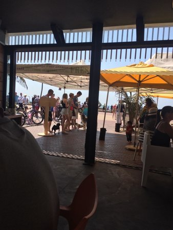 Circus Circus Beach Cafe: Very popular! People line up with their dogs.