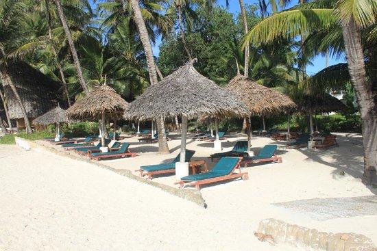 Pinewood Beach Resort & Spa : No problem getting a sunbed!