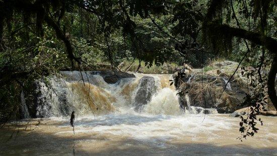 Las Kakamega