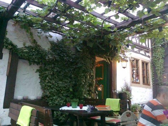 Beste Spielothek in Pleisweiler-Oberhofen finden