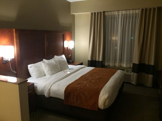 Comfort Suites South: King bed