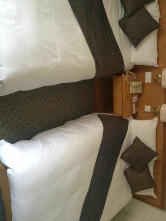Alpine Classic Hotel Leysin: Chambre double