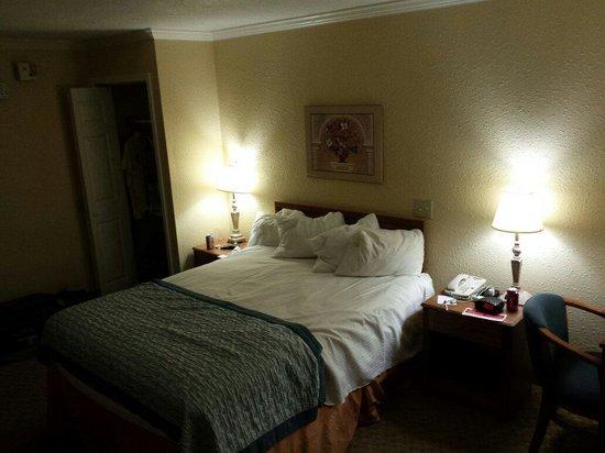 Ramada Jacksonville Hotel & Conference Center : Room