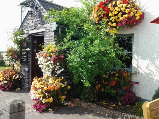 Four Crosses Inn: Wow nice flowers