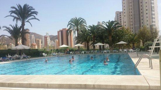 Hotel Caballo de Oro: Nice pool