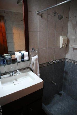 Apartotel La Sabana : Baño