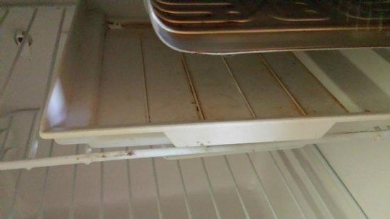 Motel 6 Galveston - Seawall: Fridge