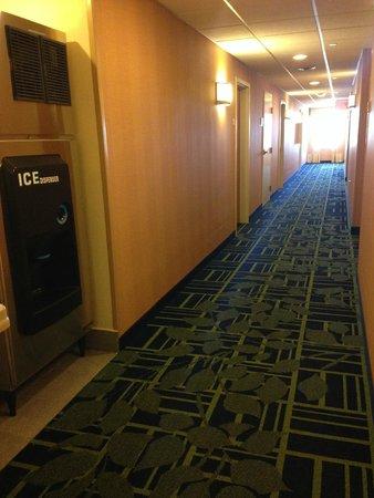 Fairfield Inn New York LaGuardia Airport/Flushing : Hotel