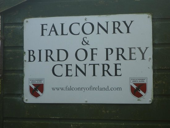 ‪Falconry Ireland‬