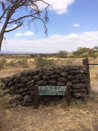 Tortilis Camp: The entry sign