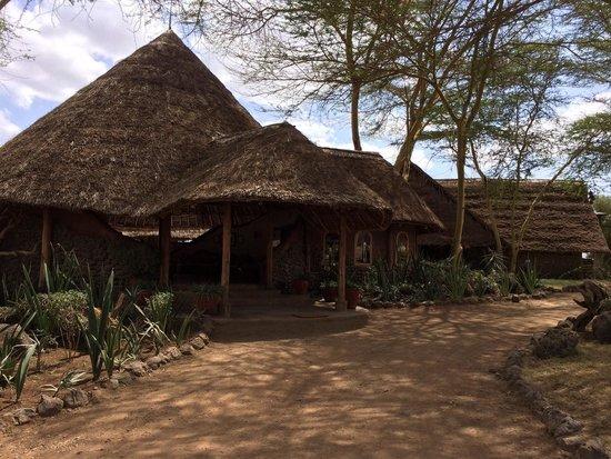 Tortilis Camp: Entrance