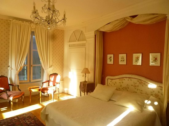 Chateau d'Epenoux: Romantic Room