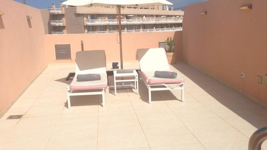 Hotel Sir Anthony: Our rooftop terrace!