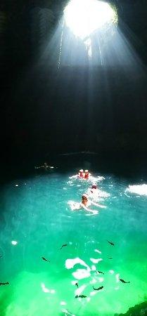 Cenote Aktun chen: Cenote - beleza extraordinária