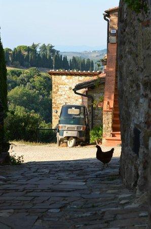 Tours Around Tuscany : Small Tuscan Village