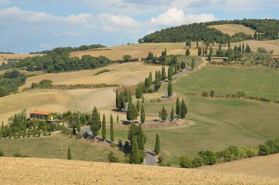 Tours Around Tuscany : Winding road with picture perfect view