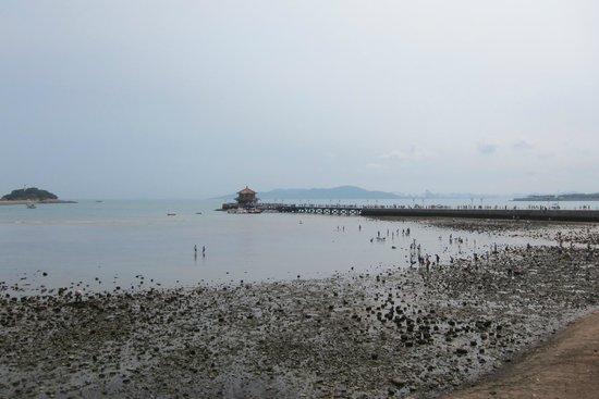 Zhanqiao Pier: Pier