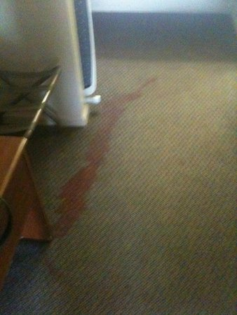 FairBridge Inn Express: Stained carpet , more spots than this.